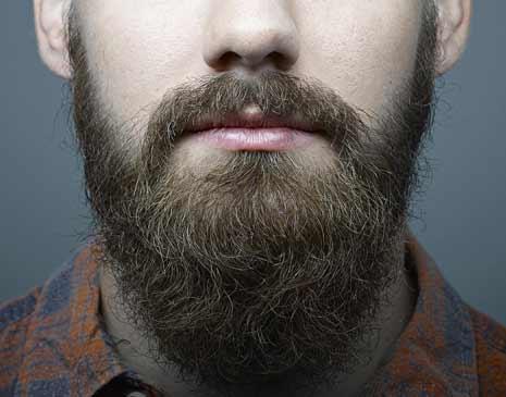 BHT greffe de barbe